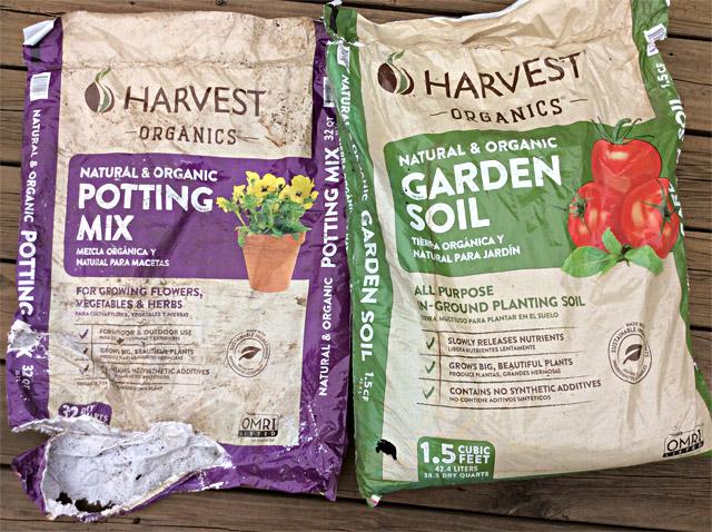Container garden soil experiment
