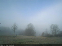 foggy morning timelapse webcam